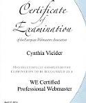 WE Webmaster Diplom