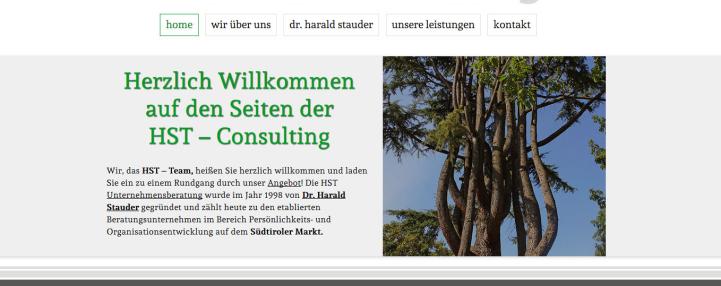 HST Consulting des Harald Stauder